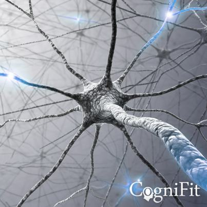 CogniFit Training: The Key To Cognitive Vitality