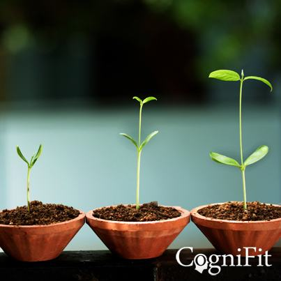 CogniFit Core Technology - The Basis For Cognitive Development